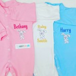 BUNNY RABBIT PERSONALISED EMBROIDERED BABY GROW